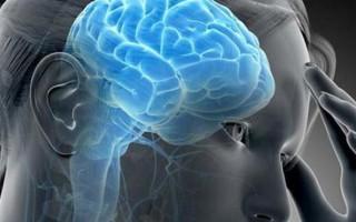 Патологии и заболевания головного мозга: признаки и симптомы заболеваний