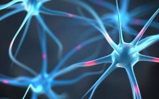 Лекарства для восстановления клеток головного мозга