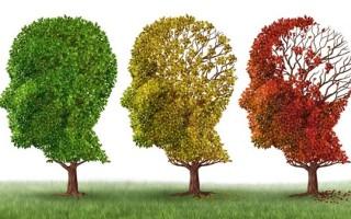 Потеря памяти у молодых и пожилых людей: причины и терапия
