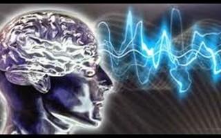 Альфа волны головного мозга: бета, дельта, тета активность