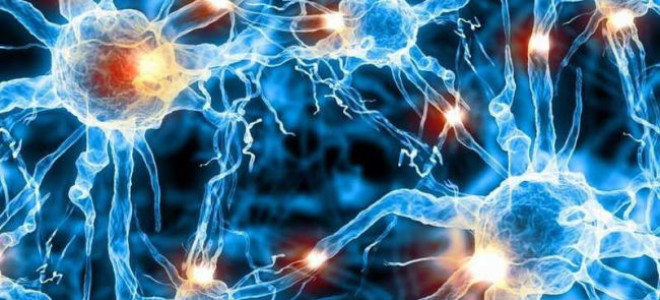 Что такое органическое поражение головного мозга