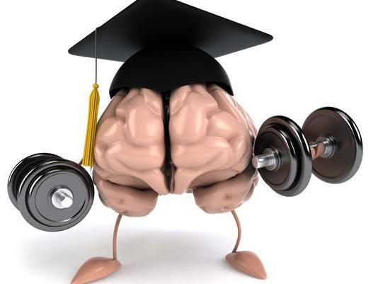 масса мозга